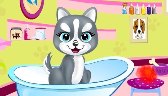 Игры для девочек мыть животных онлайн о