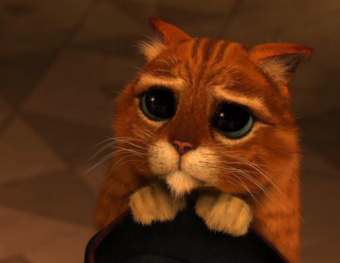 Кот в сапогах картинки не из мультика